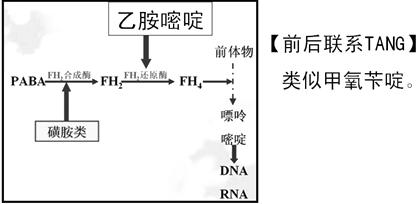 抗微生物药知识点及TANG原创记忆口诀(执业药师药理学)